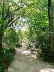 Path to S_ Baume-provence2010