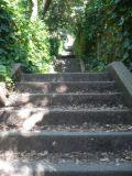 secret stairs 1