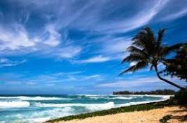 windy-beach